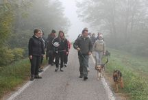 Sull'argine / On the river bank / Passeggiando con il junior class il 2 novembre / Going for a walk with the junior class on a foggy Sunday