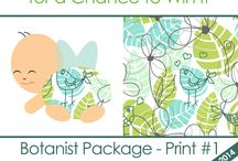 2015 Prints / New Glow Bug Cloth Diapers Prints