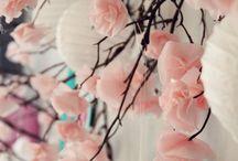 flores d duraznos