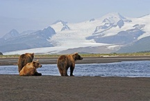 Alaska ,  I want to go back ! i miss it  / Beautiful , is all I can say  / by Mary Apple