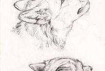 desenhos animais