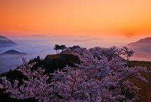 De Francia a Japón: seguimos la ruta de 'Seda' de Baricco