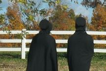 Amish Recipes   and  Life / by Shelva Joseph