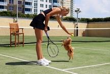sport end.....