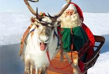 Christmas Magic 1 / by Ann MK