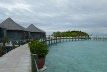 Malediven - Komandoo Island Resort / Auf Komandoo Island haben Sie beste Tauchbedingungen: eine türkisblaue Lagune mit kristallklaren Wasser sowie ein wunderbares Hausriff, das Taucherherzen höher schlagen lässt.