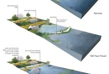 wetlands.design