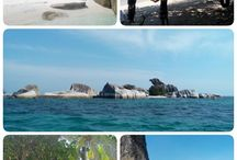 belitung & derawan island