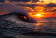 Ocean  / by Morgan Johnson