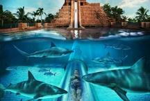 Dream Vacation GetAways