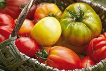 tomates les variétés