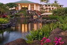 Hawaii / Aloha!