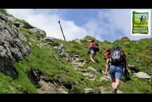 Walking in Ireland / A walking holiday in Ireland allows you to experience Ireland off the beaten track!