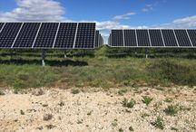 location de terrain panneau solaire