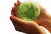 Elettrodomestici e risparmio energetico / Consigli per la scelta degli elettrodomestici ed informazioni sul risparmio energetico