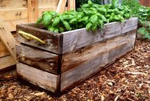 Boîtes jardinage