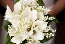 The Wedding Flowers / Gorgeous bouquets for the bride and bridesmaids, Corsages for the mother of the bride and groom, boutonnieres for the groomsmen.
