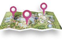 Parcs d'attractions - hébergements Fleurs de Soleil Chambres d'hôtes ou Gîtes / Puy du Fou , Disneyland Paris , Futuroscope Poitiers ,