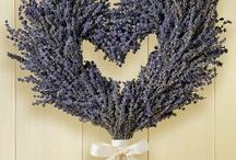 Mon Amour Provence