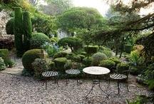Gravel Terrace