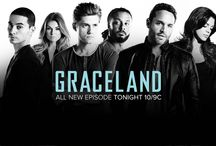 Graceland ~ Love this new show