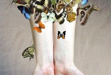 Bugs...Butterflies