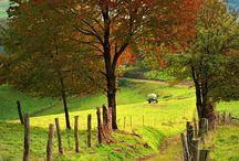 Country road take me home