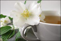 Health Benefits White Tea
