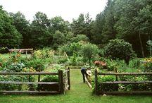 Bahçecilik ve kümes