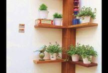 plantas e lavanderia