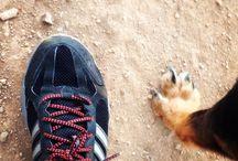 Health & Fitness / Boxing, Kickboxing, Running & Living Life