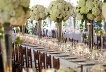 Wedding ideas / by Laurie Stadler