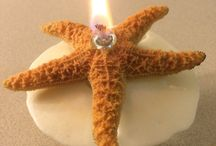 Candles / Sea Shell Oil Lamps of South Florida. Beautiful scented oil lamps made of sea shells, sea dollars and starfish.