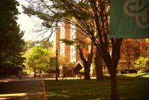 Oregon 4-Year Public Universities / 4-Year Public Universities
