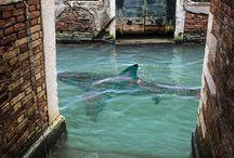 ❥❥ S H A R K S  ❥❥ / Sharks | haaien