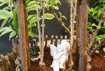 Fairy Gardens / by Talesa (Galvin) Peterson
