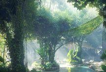 Indoor Rain Forest