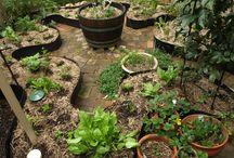 Garden - Permaculture Inspiration
