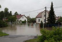 Flooded Basement Ogden
