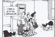 Border Collie Humor / Funny!