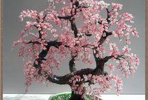 Árboles bonshai