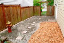 Dog Yard Ideas