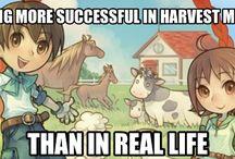 Harvest moon / Hi I am also a harvest moon fan. I play sky tree village on my new 3ds xl.