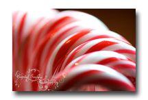 CGP Decor: Christmas