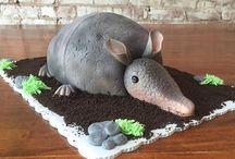 Nature bday cake 6th bday