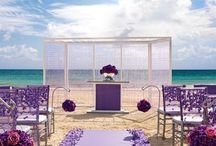 Colin Cowie Weddings / Colin Cowie for Hard Rock Hotels