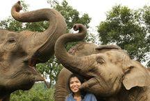 Travel_Thailand