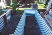 garden beds veges