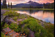 美しい風景