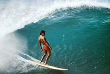 Surf & Skate